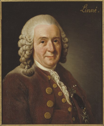 Carl Linnaeus (1707-1778) was a Swedish botanist, physician, and zoologist, who formalised the modern system of naming organisms called binomial nomenclature.