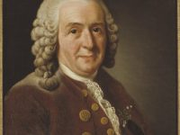 Carl Linnaeus – 'Princeps Botanicorum', the Prince of Botany