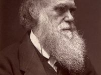 Charles Darwin and the Natural Selection