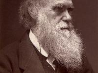 Charles Darwin and the Natural Selection