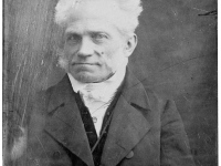 The World according to Arthur Schopenhauer