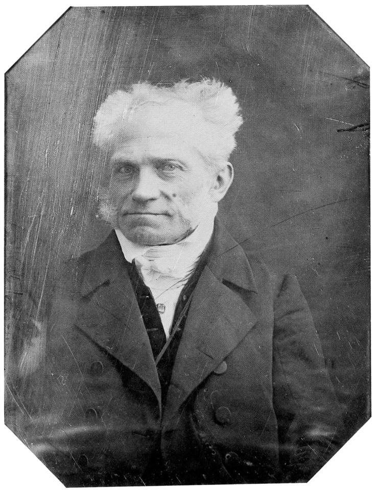The World according to Arthur Schopenhauer