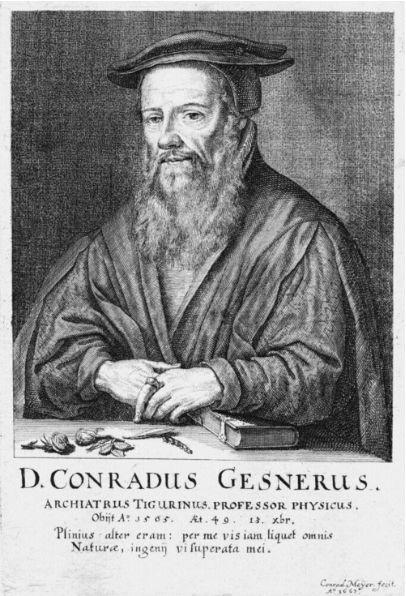 Conrad Gessner (1516–1565), Stich von Conrad Meyer, 1662