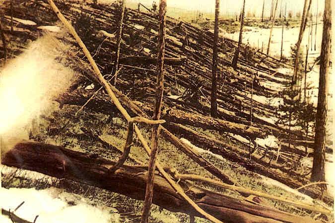 Impact of the Tunguska Event