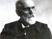 Johannes van der Waals –  A Pioneer in the Molecular Sciences