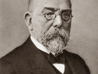 Robert Koch and his Fight against Tuberculosis