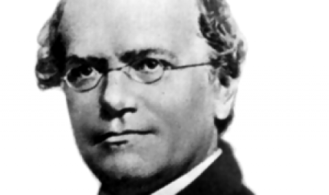 Gregor Mendel and the Rules of Inheritance