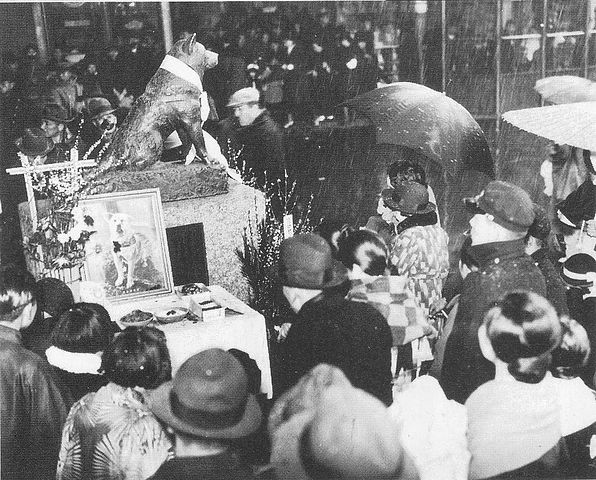 March 8, 1936, one year anniversary of Hachiko's death