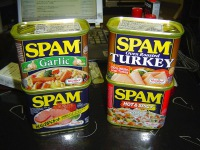 SPAM Rules the Internet