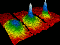 The Bose-Einstein Condensate brings Quantum Theory to the Macroscopic Scale