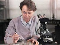 Barbara McClintock and Cytogenetics