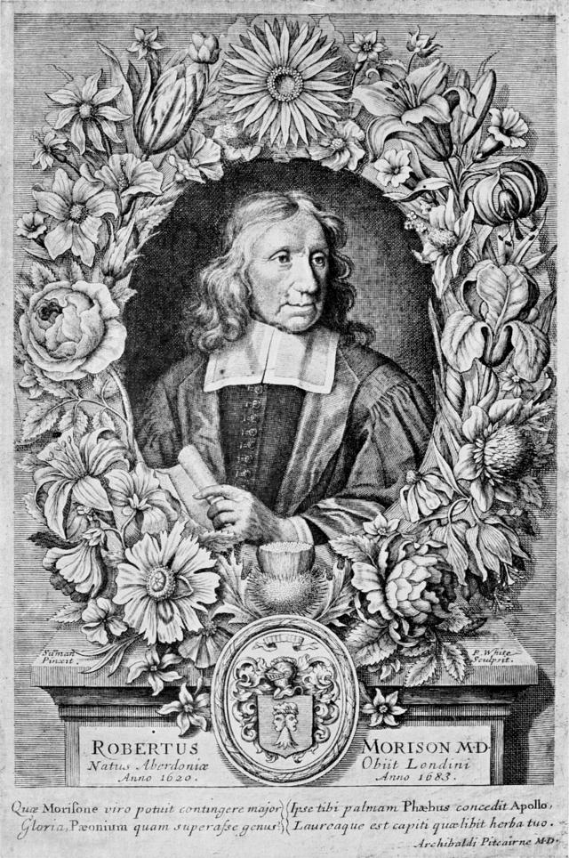 Robert Morison (1620-1683)