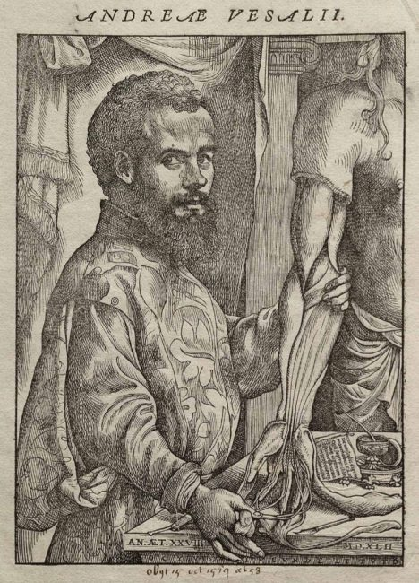 Portrait of Vesalius (1514-1564) from his De humani corporis fabrica, 1543