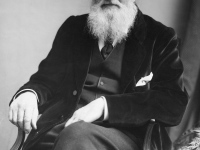 Alfred Russel Wallace and the Natural Selection