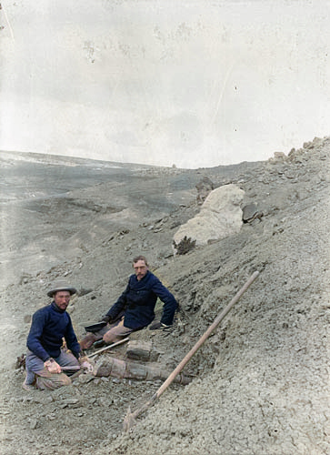 Barnum Brown (left) and Henry Osborn at Como-Bluff during the American Museum of Natural History expedition of 1897. At front - limb bone of Diplodocus