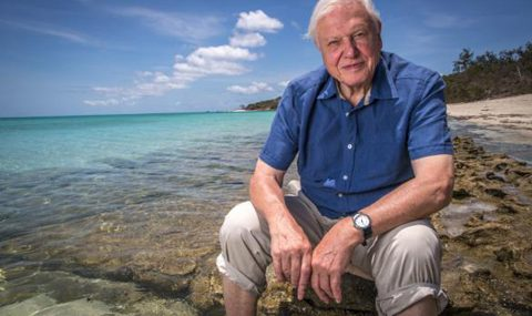 David Attenborough and Life on Planet Earth