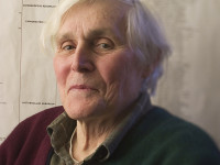 Carl Woese and the Evolution of the Cell Organization