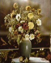 A colour photograph made by Gabriel Lippmann in the 1890s
