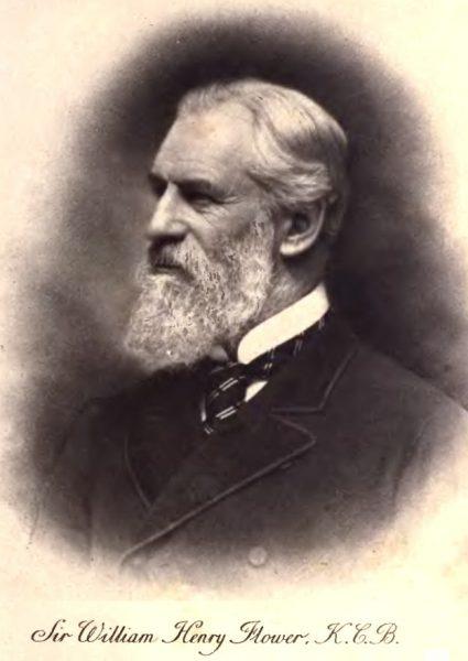 William Henry Flower