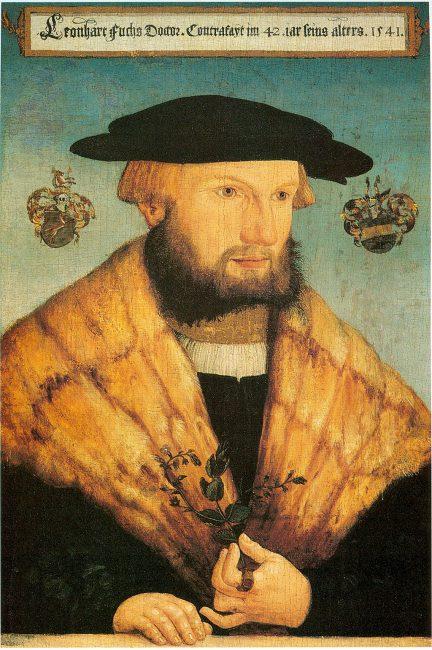 Leonhart Fuchs (1501-1566)