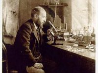 Santiago Ramón y Cajal and the Microscopic Structure of the Brain