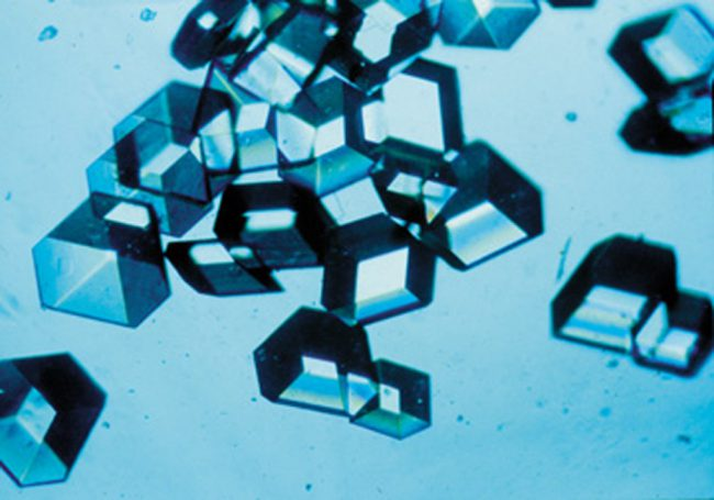 Insulin crystals