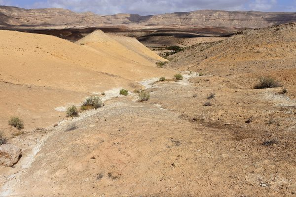 Upper Matmor Formation in Makhtesh Gadol, southern Israel.