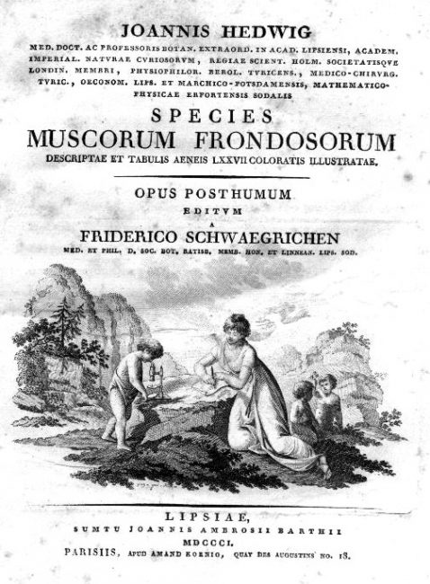 "Title page of ""Species Muscorum Frondosorum"""