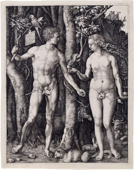 Adam and Eve, 1504