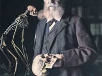 Ernst Haeckel and the Phyletic Museum