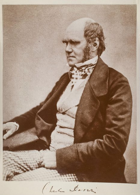 Darwin pictured shortly before publication