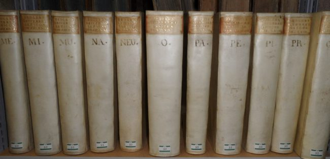 "Some volumes of ""Grosses vollständiges Universal-Lexicon Aller Wissenschafften und Künste ..."" published by Johann Heinrich Zedler, binding of the time, in the Central Library of Solothurn, Switzerland"
